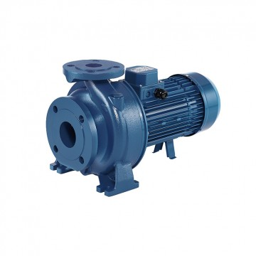 Centrifugal pumps standardized to EN733 (3D SERIES)