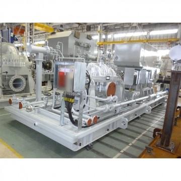 Custom Pump(C / SPD / SPW)