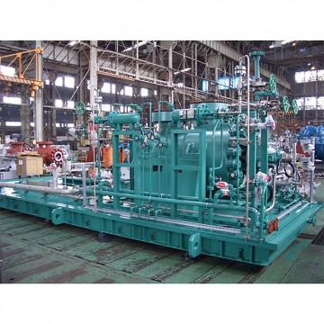 Process Pump (DCS / DCD)