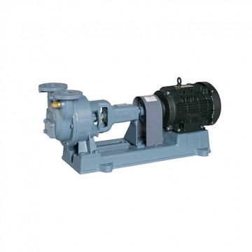 EBARA water ring vacuum pump