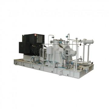 Process Pump (R2, R2D)