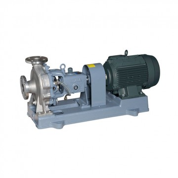 Single suction process pump (chemical / light slurry)
